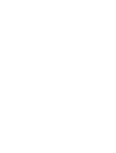 logo_footer_WBDA_white_transparent2-229x300.png